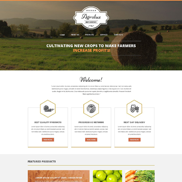 Website Template № 51341
