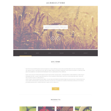Website Template № 52173