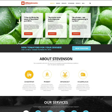 Website Template № 52416
