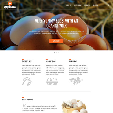 Website Template № 52491