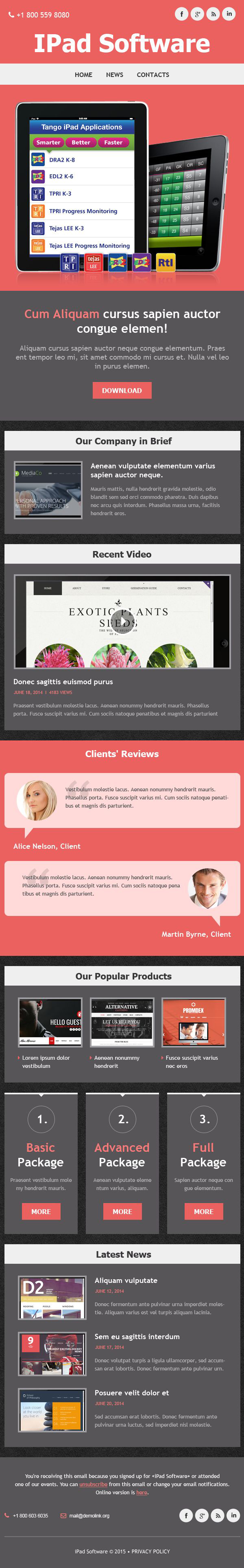 Software Company Responsive Newsletter Template