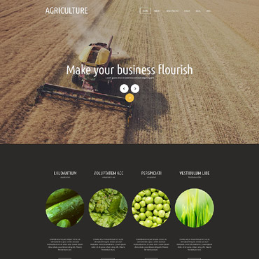 Website Template № 53147