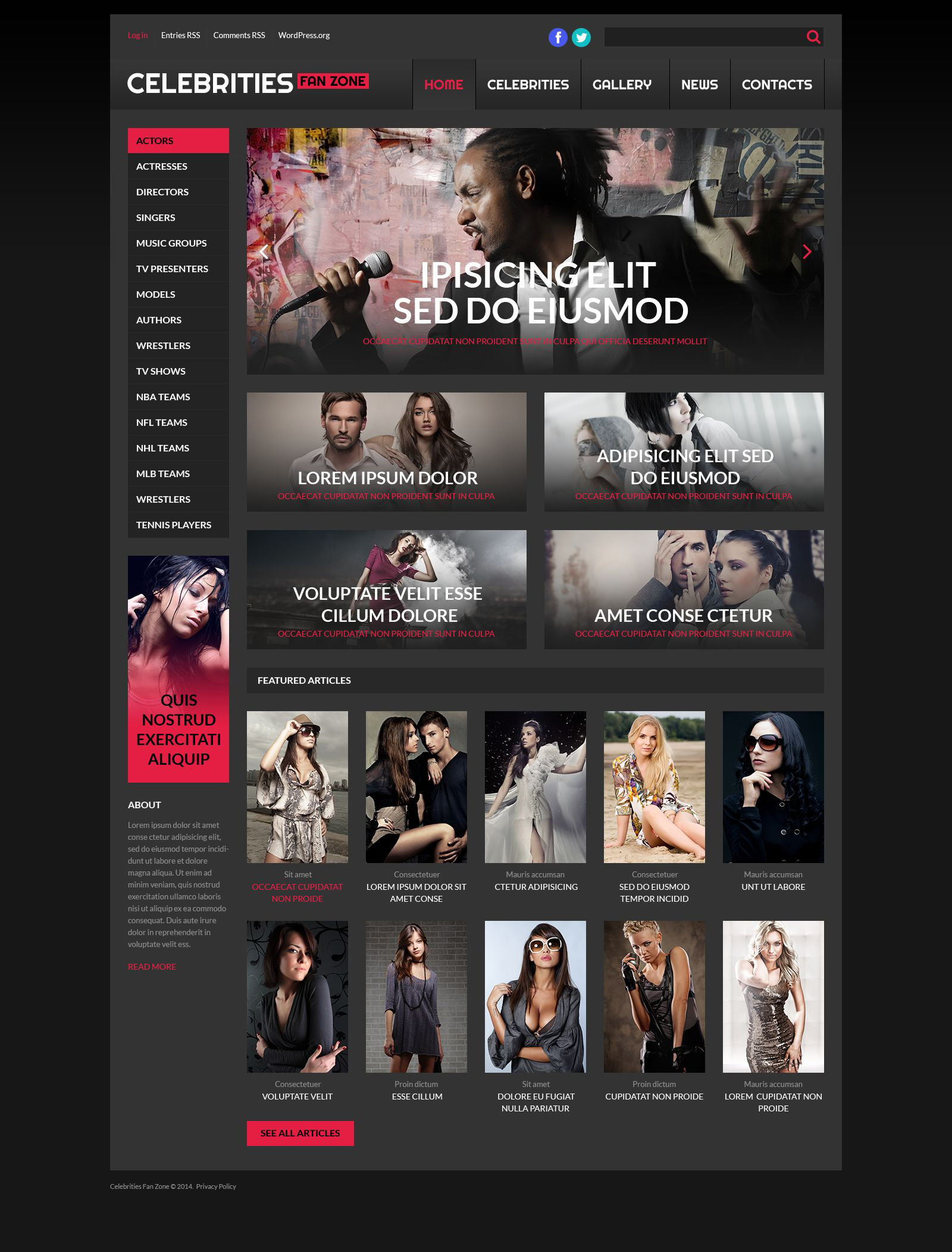 Online Cinema WordPress Theme