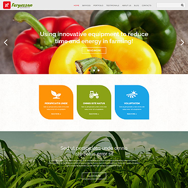 Website Template № 54724