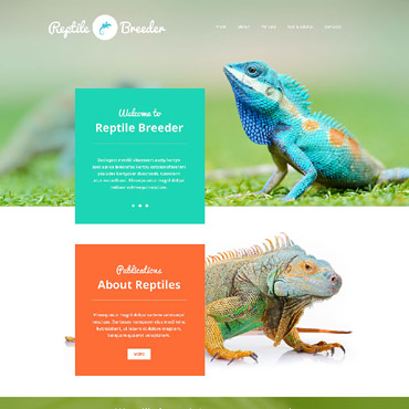 Website Template № 54811