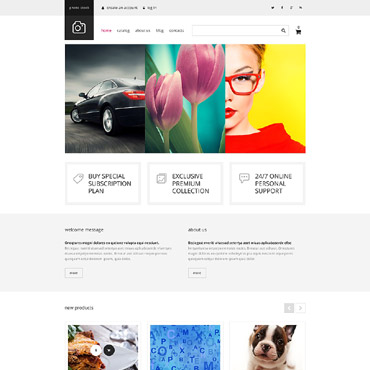 Website Template № 54838