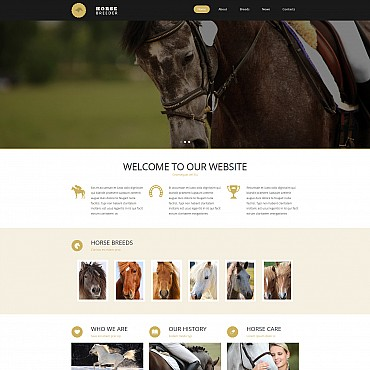 Website Template № 54908