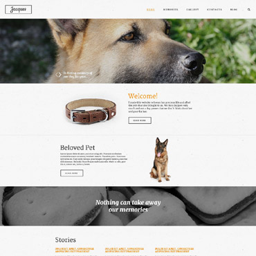 Website Template № 55278