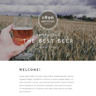 Website Template № 55413