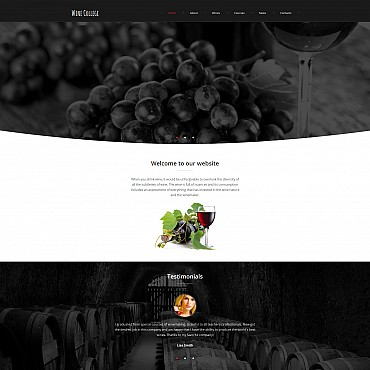 Website Template № 55541