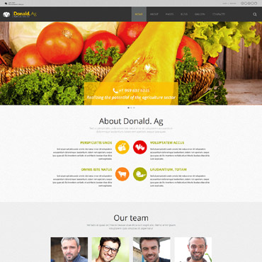 Website Template № 55599