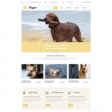 Website Template № 55851