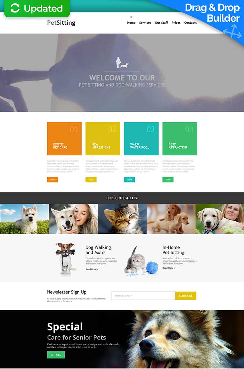 Pet Sitting Moto CMS 3 Template