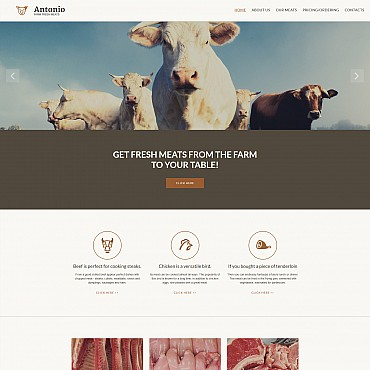 Website Template № 55854