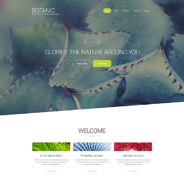 Website Template № 55956