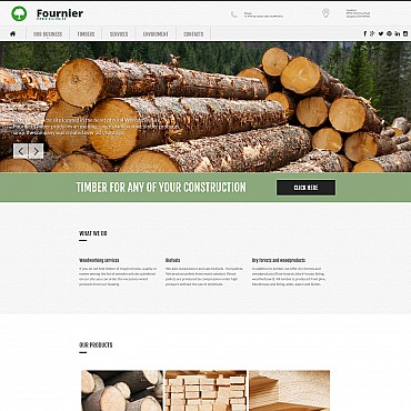 Website Template № 56050