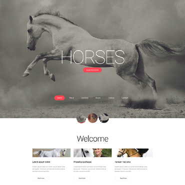 Website Template № 56066