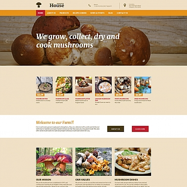 Website Template № 56099