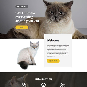 Website Template № 57676