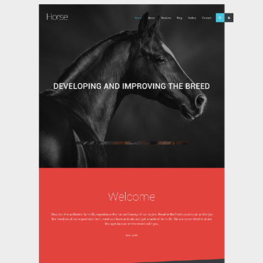 Website Template № 57835