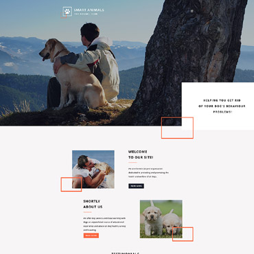 Website Template № 57842
