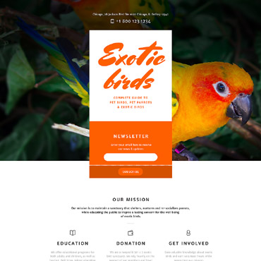 Website Template № 58015