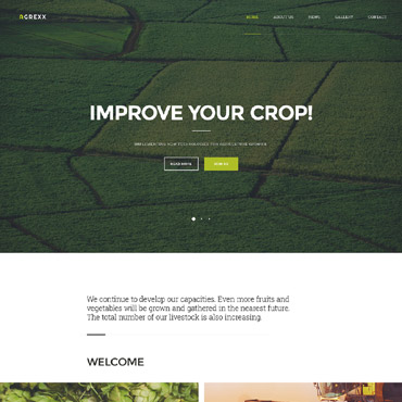Website Template № 58086