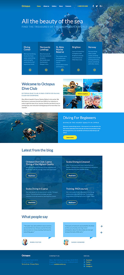 Diving, Responsive Website Template