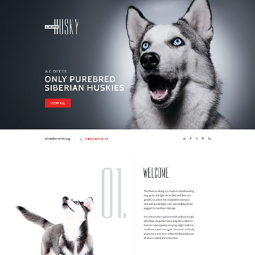 Website Template № 58457