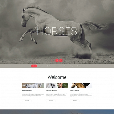 Website Template № 58687