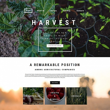 Website Template № 59260