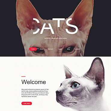 Website Template № 59276