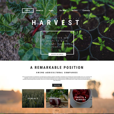 Website Template № 61135