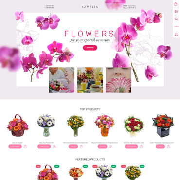 Website Template № 62003