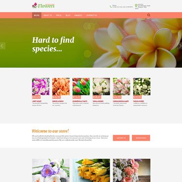 Website Template № 62256