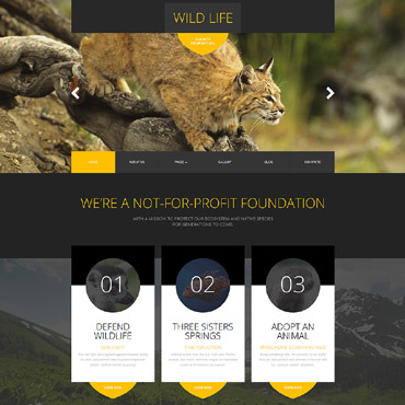 Website Template № 62265