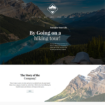 Website Template № 62388