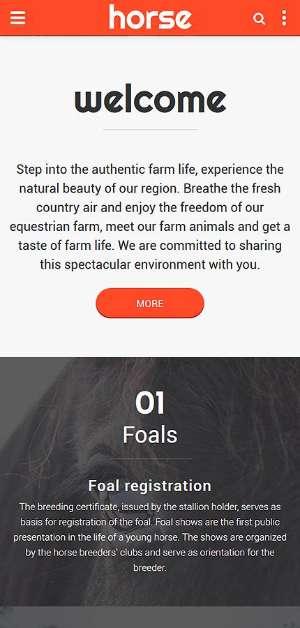 Horse - Horse Farm Animals, Website Template