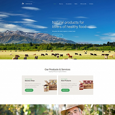 Website Template № 63458