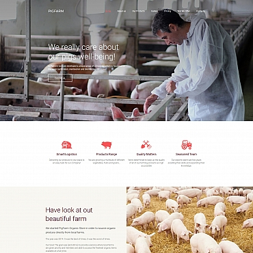 Website Template № 63462