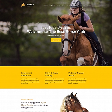Website Template № 63478