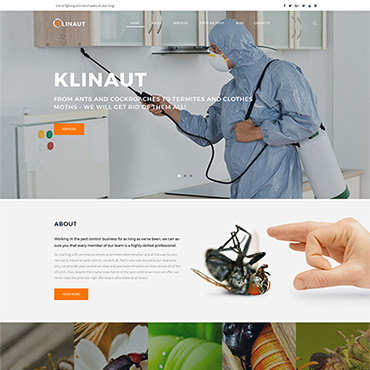 Website Template № 63531