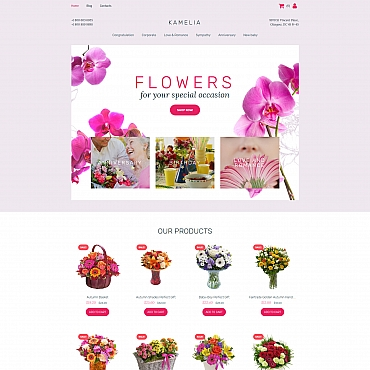 Website Template № 63718