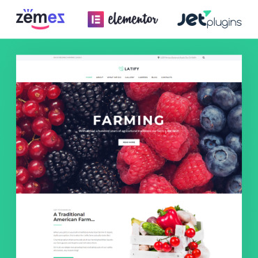 Website Template № 63957