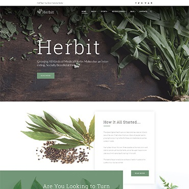 Website Template № 64148