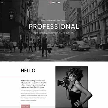Website Template № 64520