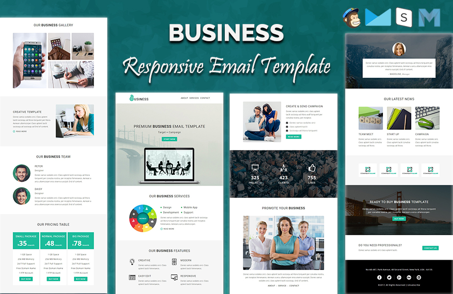 Business - Responsive Newsletter Template