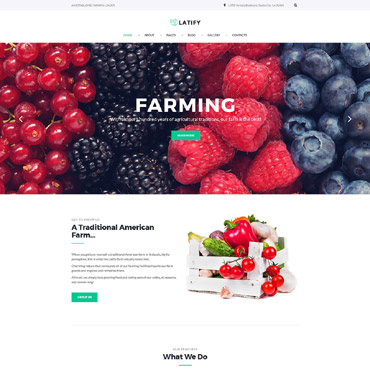Website Template № 64553