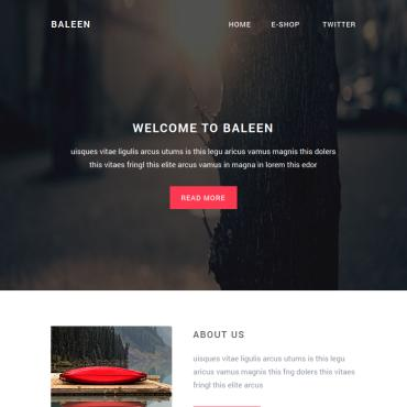 Website Template № 65043