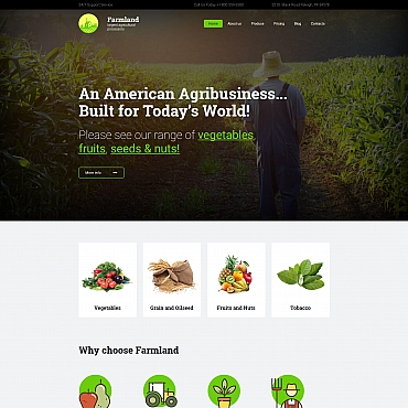 Website Template № 65073